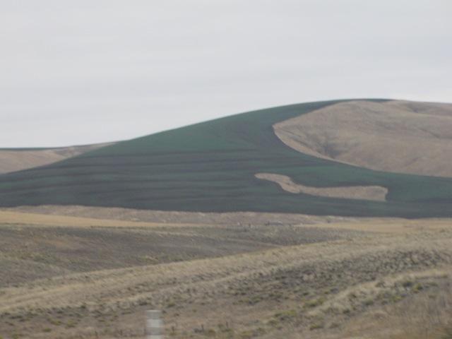 Burned fields along Highway 12 heading East