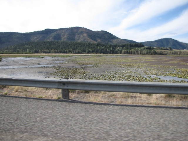 I-90 Just past Tamarack Ridge Road