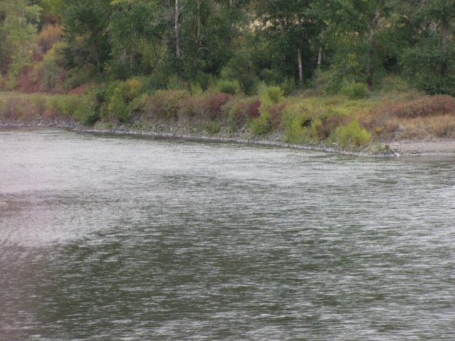 Clark Fork River near Cyr