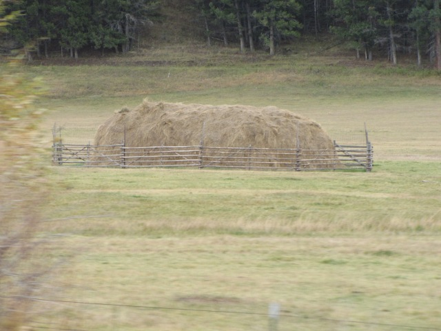 Hay bales - Jefferson County