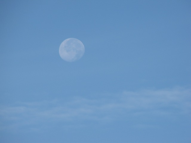 Full moon in the daytime!