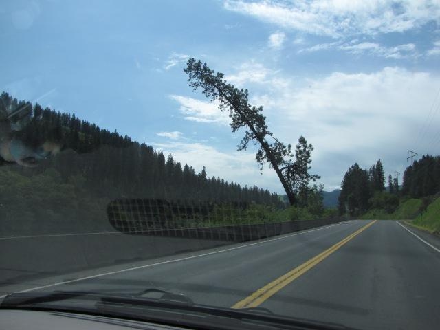 Highway 12 East