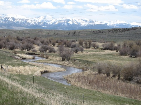 Flathead Creek