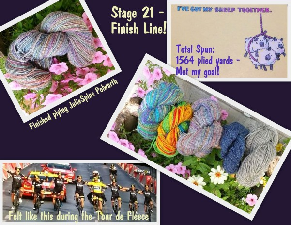 Stage 21 Finish Line Collage